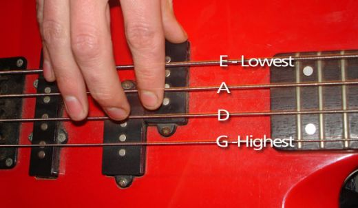 bass-guitar-string-letter-names What is a Bass?